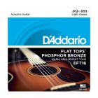 D'Addario Phospor Bronze Flat Top Acoustic Guitar Strings, Light, 012-053 EFT16