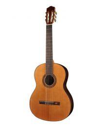 Salvador Cortez Student Series CC-15 Cedar Top Classical Guitar