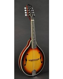 Richwood Master Series A-Style Mandolin with Spruce Top RMA-60-VS Vintage Sunburst