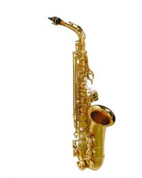 Stewart Ellis Gold Alto Saxophone with soft case 510 Series
