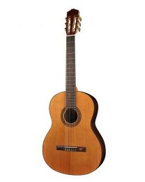 Salvador Cortez Student Series CC-15 Cedar Top Classical Guitar