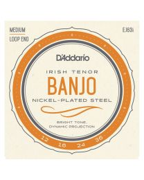 D'Addario Irish Tenor Banjo Strings, Nickel, 12-36 EJ63i