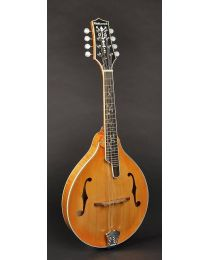 Richwood All Solid Master Series A-Style Mandolin with Solid Flamed Maple Body & Solid Spruce Top RMA-110-VS
