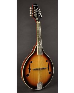 Richwood A-Style Mandolin with Spruce Top RSA-60-VS