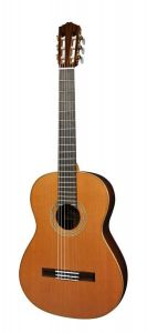 Salvador Cortez CC-140 All Solid Cedar Top 3 Piece Solid Rosewood Back with Deluxe bag